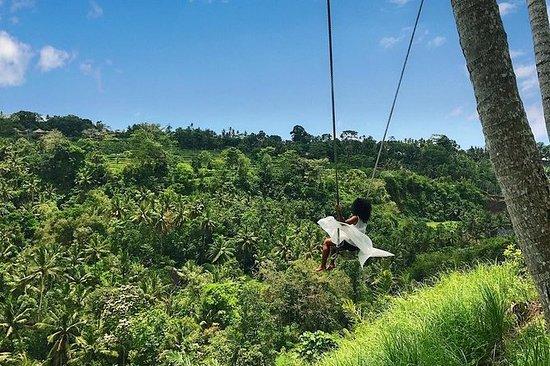Best Of Bali Tour Ubud