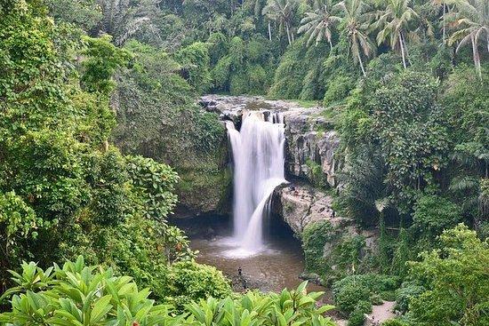 Melhor do Bali Tour-Ubud Cachoeira