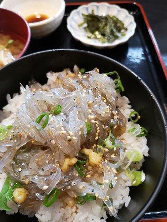 生魩仔魚飯