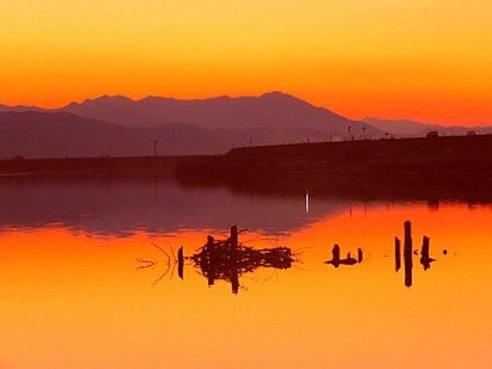 Tokushima Prefecture, Japón: 一段と暮れてきました