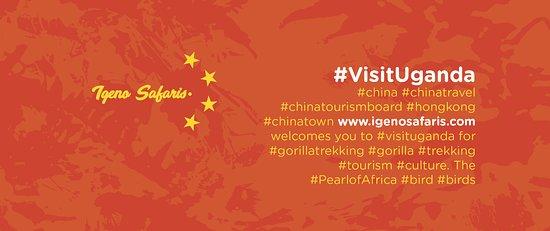 #china #chinatravel #chinatourismboard #hongkong #chinatown www.igenosafaris.com welcomes you to #visituganda for #gorillatrekking #gorilla #trekking #tourism #culture. The #PearlofAfrica #bird #birds