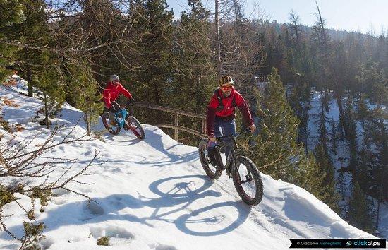 Primiero San Martino di Castrozza, إيطاليا: Un tour di ben 3 ore in mountain bike in compagnia di istruttori qualificati che vi regalerà le Dolomiti dalla prospettiva delle due ruote, anche in inverno!