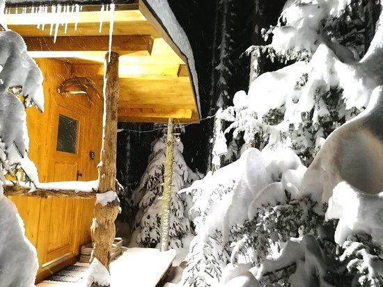 Ütte für 4 Personen mit Infrarotheizung und toller urige Ausstattung... Natur pur im Wald