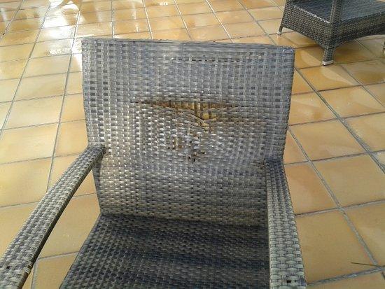 bar Hotel Park terrasse Picture San Chaise de of Jorge BrdCxoe