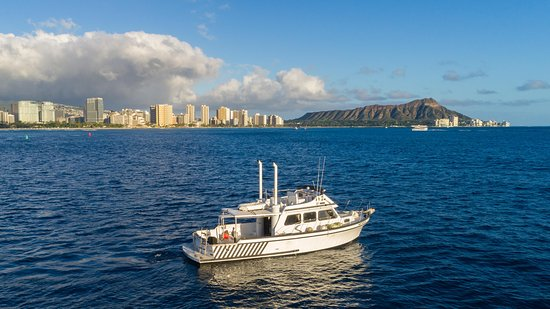 Diamond Head Cruises