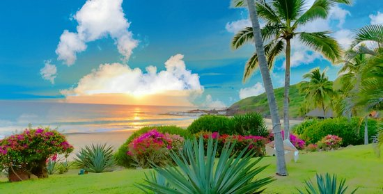 Las Alamandas Resort: The views are amazing!