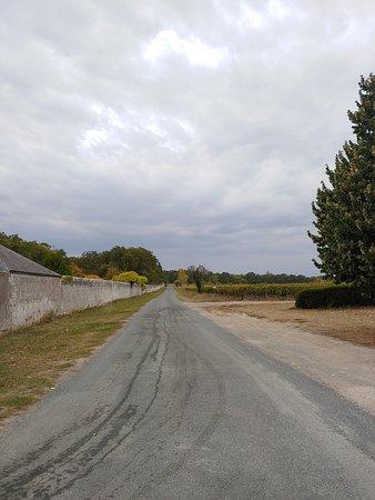 Athee-sur-Cher, Γαλλία: Leaving Chateau de Nitray