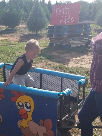Stockbridge, GA: Awesome little train for the kids!!