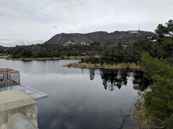 The Hollywood sign seen from the dam.