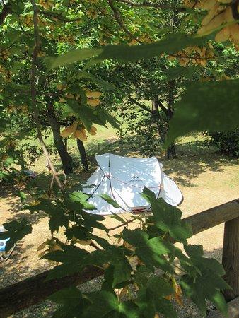 Monticello Amiata Photo