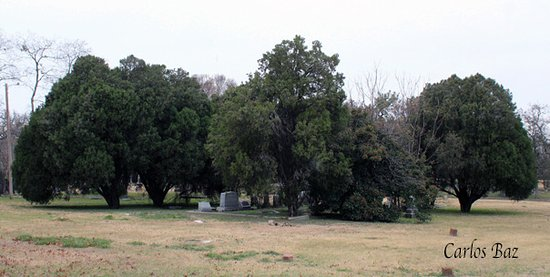 Pioneers Rest cementery at afternoon