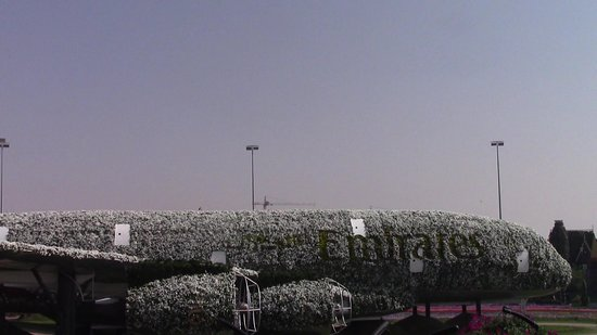 Dubai Miracle Garden 사진