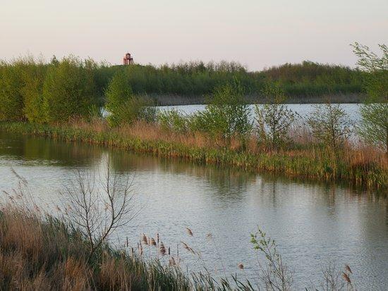 Winschoten, Holandia: Oldambt Lake is arround