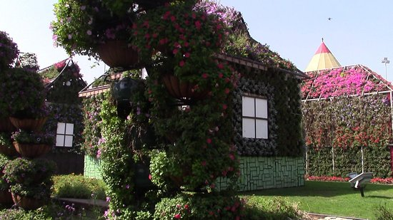 Dubai Miracle Garden: Spettacolare esposizione fiorita