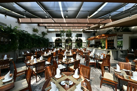 The 10 Best Restaurants For Special Occasions In Mexico City