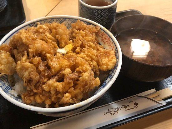 Bilde fra Tenshige