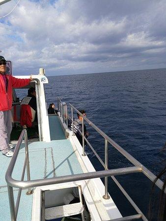Okinawa Island Crew