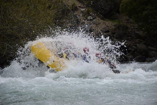 Villa Pehuenia, Argentina: Rafting en río Aluminé superior