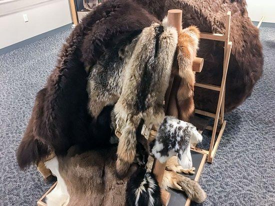North Dakota: Sample Furs