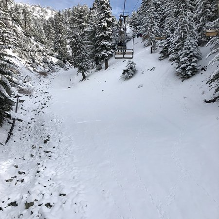 Mount Baldy, CA: Just went there for a day trip! Fresh powder. Nice ppl. Fun day within an hour of downtown LA! Could have had more trails open if more snow