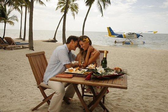 フロリダキーズの昼食付きマイアミからのシープレーンフライト