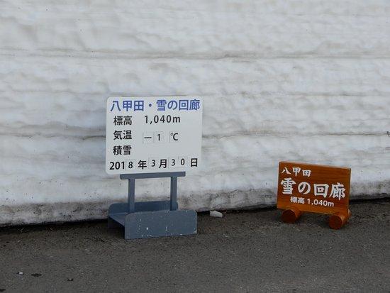 Aomori Prefecture, Japon: 八甲田ウオーク 雪の回廊