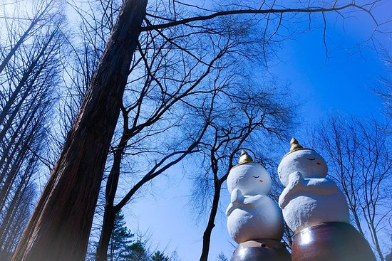 Day Trip to Nami Island with Petite...