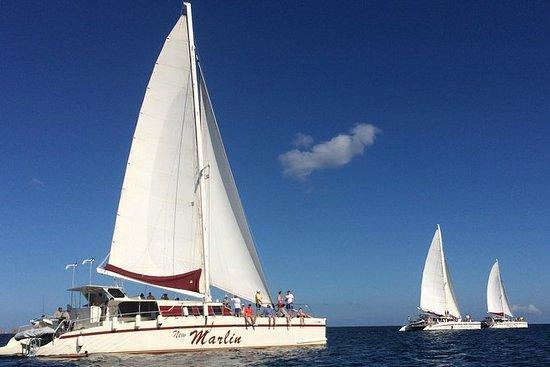 Catamaran Snorkeling & Sunset Sailing...