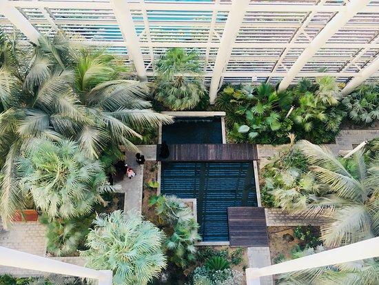 Umm Al Emarat Park Abu Dhabi 2020 All You Need To Know Before You Go With Photos Tripadvisor