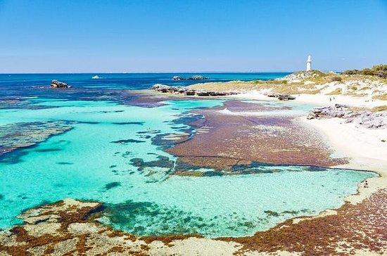 Rottnest Island Bayseeker dia de viagem de Fremantle