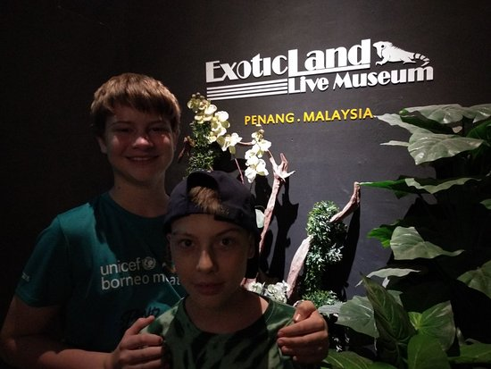 Exotic Land Live Museum