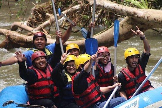 Bali Rafting Tour con almuerzo