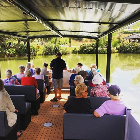 Matakana River Tours Licensed for 20 people. Seating and under cover for all passengers Perfect for a family day trip, or group bookings