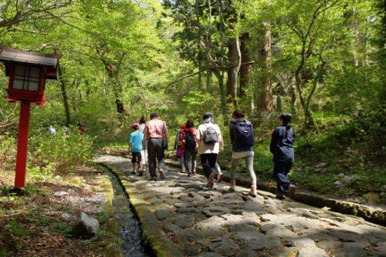Daisen-cho, Japão: 大神山神社奥宮へとつづく日本一長い自然石の石畳の参道