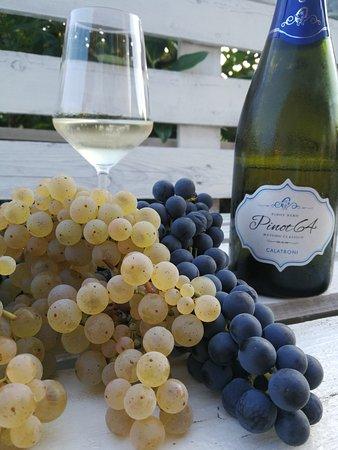 Montecalvo Versiggia, Italië: Vini di nostra produzione abbinati ai piatti