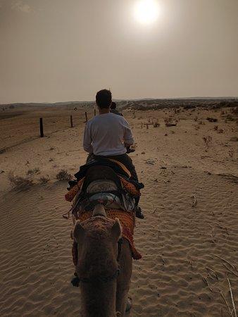 Die Milliarden Sterne Erfahrung in der Wüste: Camel safari