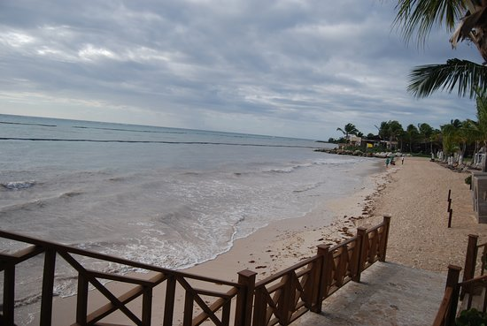 Beach - looking from the Blue Marlin