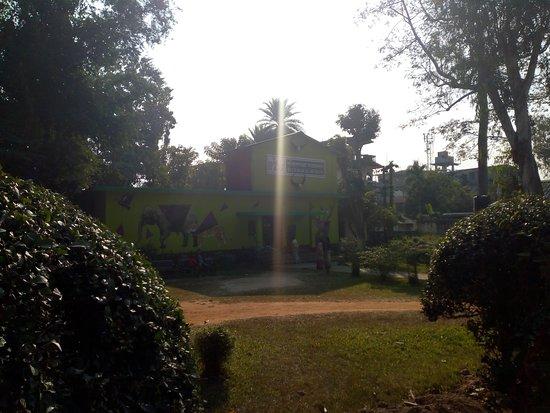 A spot inside the zoo