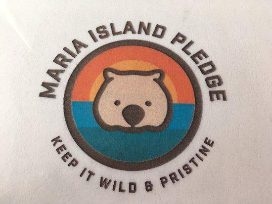 Maria Island Foto