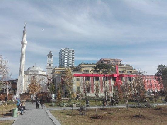 Attractive Albani