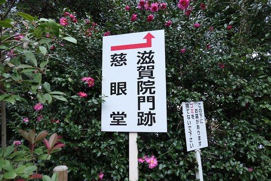 慈眼堂と滋賀院門跡は隣同士なんで同じ方に案内があります。
