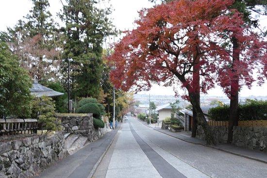 この地は比叡山延暦寺の麓の大津市坂本にあり、結構急な坂の途中に慈眼堂や滋賀院門跡はあります。