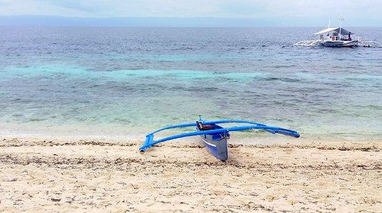 Balicasag Reef: Spiaggia