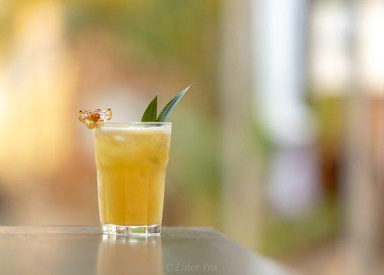 Goa's Ark: Cocktail
