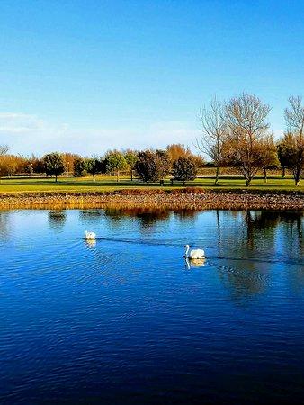 Bel parco con laghetto, vicino al mare a Caorle
