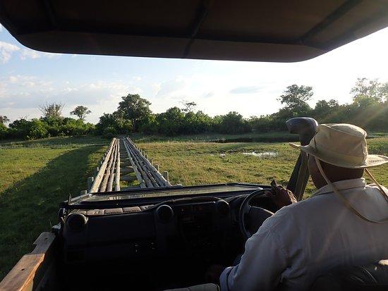 Linyanti Reserve, บอตสวานา: Crossing the Savuti