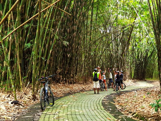 Bali Hai Adventure Tours