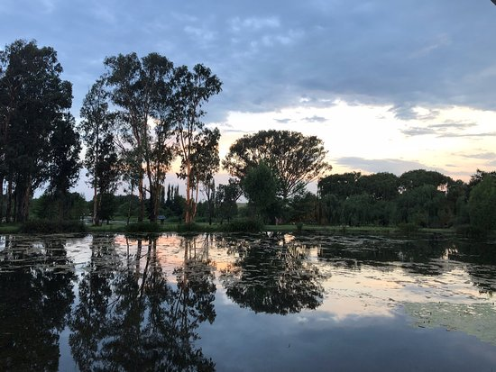 Bronkhorstspruit, Zuid-Afrika: These photos were taken in January 2019 after good rains. Everything is lush and beautiful. They go the extra mile to creat secret corner for special photos.