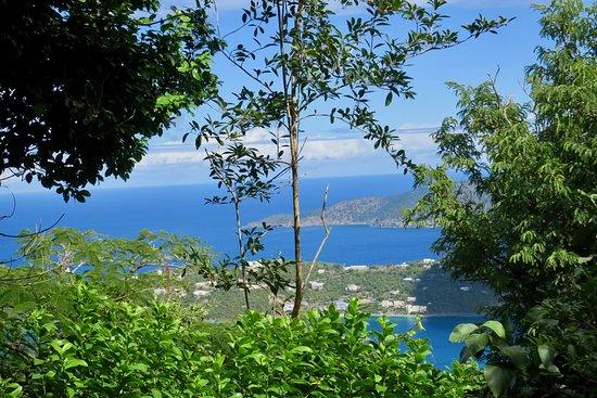 Phantasea Tropical Botanical Garden: View of Magens Bay from the gardens