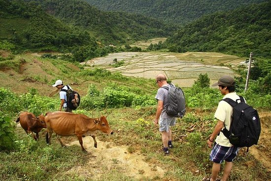 Private 3-Day Trekking Tour: Pu Luong...